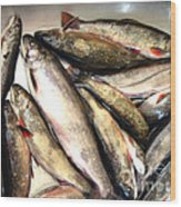 Fine Catch Of Trout Wood Print
