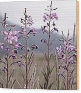 Fireweed In A Sea Of Grass Wood Print