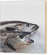 Fish On Ice Wood Print