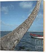 Fishing Boat And Palm Trunk Wood Print