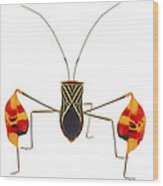 Flagfooted Bug Barbilla Np Costa Rica Wood Print