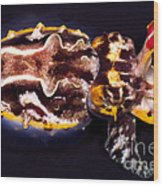 Flamboyant Cuttlefish Wood Print