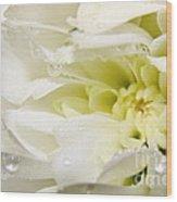 Fleur Blanche Wood Print
