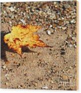 Floating Autumn Leaf Wood Print