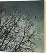Flock Of Birds Flying Over Bare Wintery Trees Wood Print