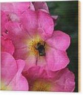 Floral 0017 Wood Print