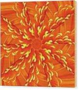 Floral Sunrise Wood Print