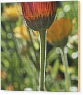 Floral Torch Wood Print