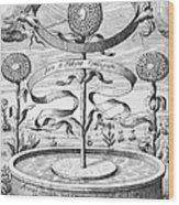 Flower Clock, 1643 Wood Print