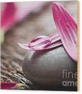 Flower Petals Wood Print