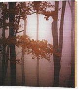 Foggy Misty Trees Wood Print