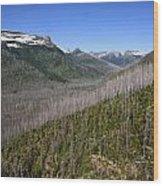 Forest Fire Sticks-1 Wood Print