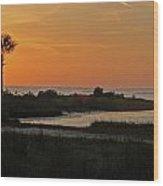 Fort Island Palm Wood Print