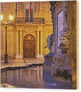 Fountain Aix-en-provence Wood Print