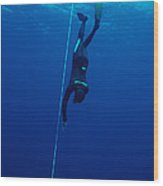 Free-diving Competitor Wood Print