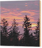 Frosted Morning Silhouette Wood Print