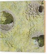 Fumarole Deposits In The Dallol Wood Print