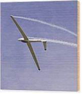 Glider Flying Aerobatics At Airshow Canvas Photo Poster Print Wood Print