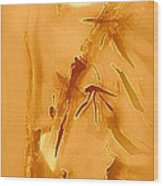 Golden Bamboo Wood Print by Wendy Wiese