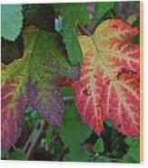 Grape Leaves Wood Print