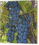 Grapes On A Vine Sutton Junction Quebec Wood Print by David Chapman