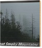 Great Smoky Mountains National Park 17 Wood Print