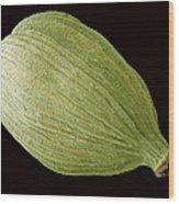 Green Cardamom Pod, Sem Wood Print by Steve Gschmeissner