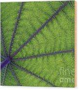 Green Leaf Wood Print
