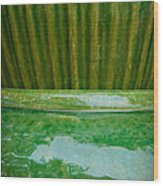 Green Pottery Wood Print