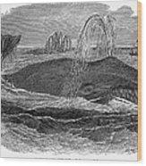 Greenland Whale Wood Print