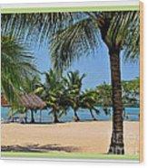 Guatamala Beach Wood Print