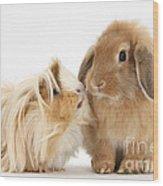 Guinea Pig And Rabbit Wood Print