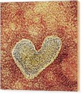 H5n1 Avian Influenza Virus Particle, Tem Wood Print