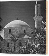 Hala Sultan Tekke Mosque Larnaca Republic Of Cyprus  Wood Print