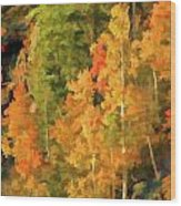 Hang Gliding The Autumn Colors Wood Print