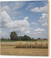Harvest Time In France Wood Print
