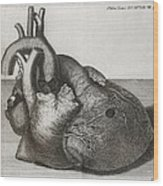 Heart Of King George II, 18th Century Wood Print