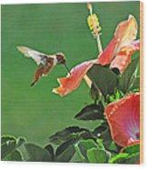 Hibiscus Hummer Wood Print
