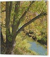 Hidden Creek Wood Print