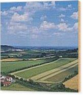 High Angle View Of Fields, Stradbally Wood Print