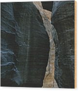 Hikers In The Siq Canyon Leading Wood Print