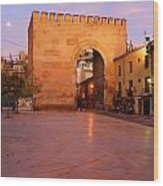 Historic Door In Granada Elvira Arch Wood Print