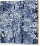 Hoarfrost On Trees In Winter, Birds Wood Print