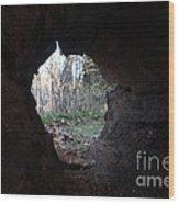 Hollow Log Wood Print