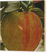 Honey Crisp Wood Print
