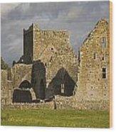 Hore Abbey, Cashel, County Tipperary Wood Print