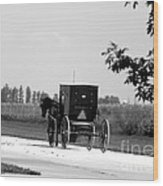 Horse And Buggy On The Road Wood Print