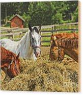 Horses At The Ranch Wood Print