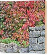 Hot Autumn Leaves 02 Wood Print