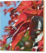 Hot Autumn Leaves Wood Print
